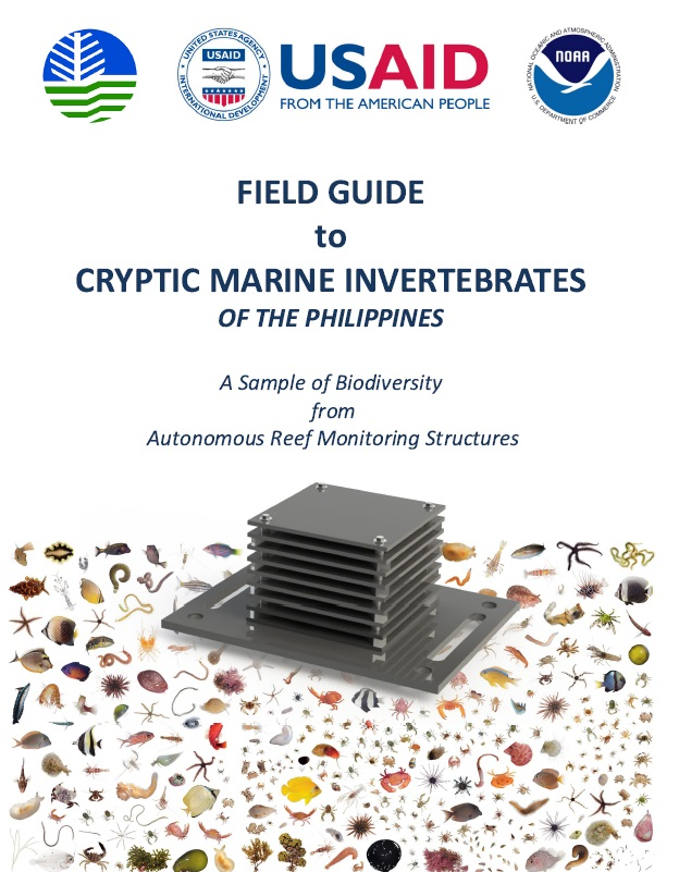 cryptic marine guide