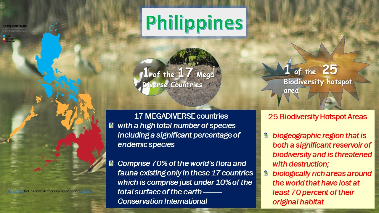 philippines as megadiverse